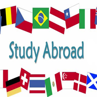 International Studies Abroad Career Planning